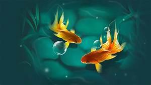 金鱼图片大全 酷图吧桌面壁纸