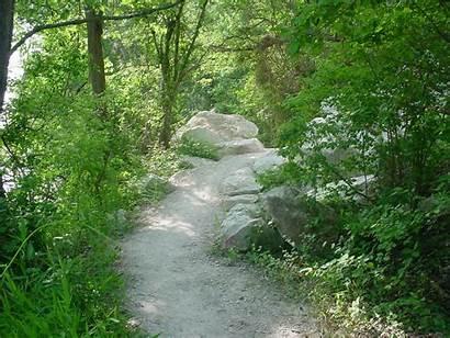Trail River Cameron Park Nrt Database