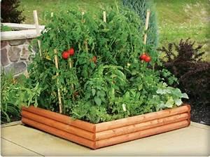 Gemusebeet planen tipps fur praktisch orientierte for Garten planen mit zimmerpflanzen für kinderzimmer