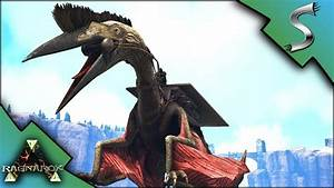 Ark griffin tame -