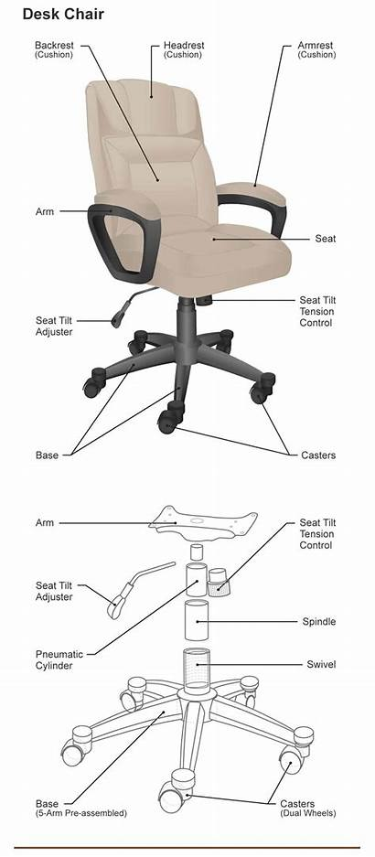 Chair Parts Desk Different Armchair Dining Seat