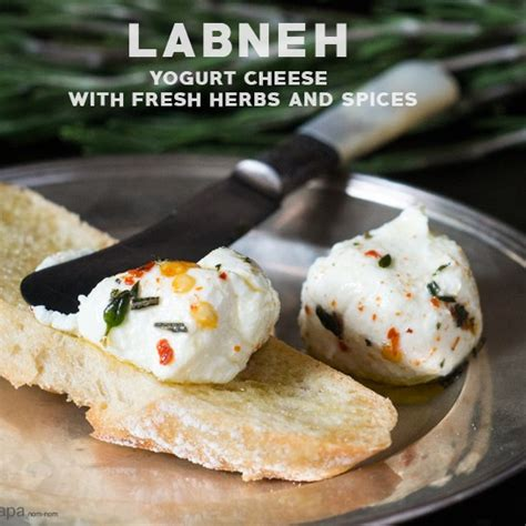 labneh yogurt cheese