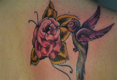 kolibri bedeutung kolibri motive und deren bedeutung