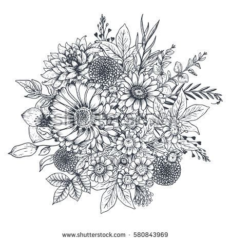 pictures pencil outline flowers bunch drawing artist