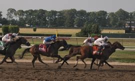 belmont stakes handicapping picks  advice wunderdog