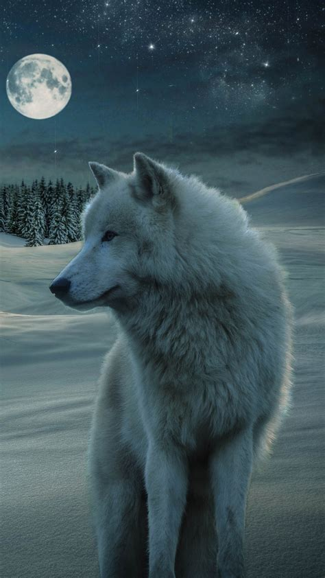 Animated Wolf Wallpaper Hd - wolf hd free wallpapers hd wallpaper