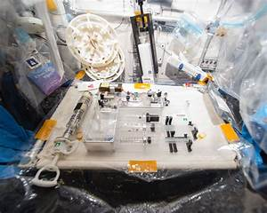 WetLab-2 (SpaceX-8) | NASA