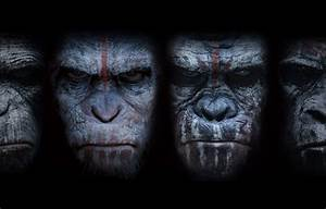 Dawn of the Planet of the Apes Android live wallpapers