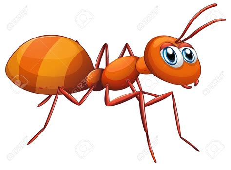 Ant Clipart Ant Clipart Illustration Pencil And In Color Ant Clipart