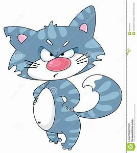 Angry Cat Stock Images - Image: 16543344  Angry