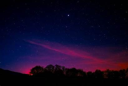 Sky Night Pink Starry Aurora Trees Wallpapers