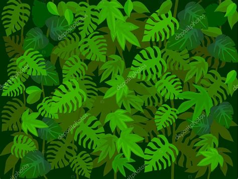 foto de fundo da floresta Vetor de Stock © dagadu #5548132