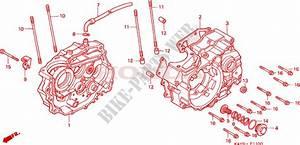 Crankcase For Honda Nx 125 1995   Honda Motorcycles  U0026 Atvs