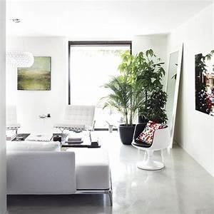 Plante De Salon : conseils d co quelles plantes pour mon salon decocrush ~ Teatrodelosmanantiales.com Idées de Décoration
