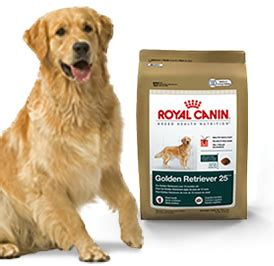 dog food  golden retriever goldenacresdogscom