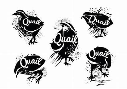 Quail Silhouette Vector Common Illustration Clipart Grunge