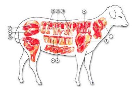 cuisiner du collier d agneau collier d 39 agneau au four sur crousti de pdt sautees à voir