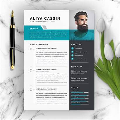 Resume Cv Word Template Professional Vitae Curriculum