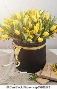 Bouquet De Printemps : bouquet printemps mimosa clair tulipes fleurs clair image recherchez photos clipart ~ Melissatoandfro.com Idées de Décoration