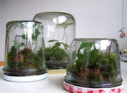 Terrarium Im Glas by Omem Seaweed Kugeln Glas Flaschen Algen Moos Kugeln Glas