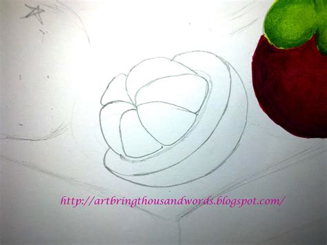 Images Of Mangosteen Drawing Golfclub