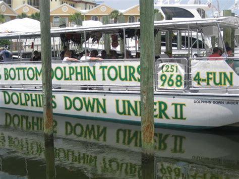 Glass Bottom Boat Tours Alabama by Glass Bottom Dolphin Tours Dolphins Orange