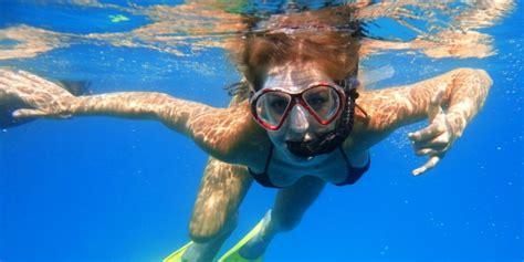 Scuba Dive Trips - coral reef snorkel or scuba dive trip discover veracruz