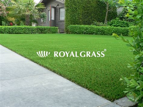 Buy Your Artificial Lawn From