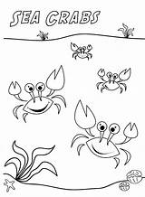 Coloring Crabe Coloriages Crabes sketch template