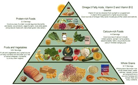 tringle cuisine vegan food pyramid food pyramids and other nutritional