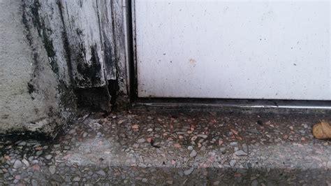 Doors  Water Coming In Through Backdoor Threshold Home