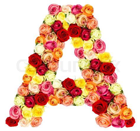 rosen blume alphabet isoliert auf weiss stockfoto