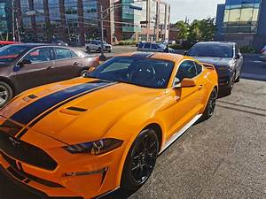 Ford Lease Takeover in Charlottetown, NB: 2019 Ford Mustang 2.3 EcoBoost Premium Manual 2WD ID ...