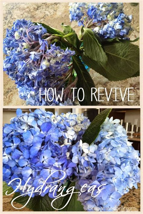 How To Revive Roses In A Vase - 17 best images about centerpieces flowers on