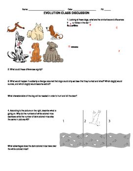 Introduction To Evolution  Worksheet By Huynhing Tpt