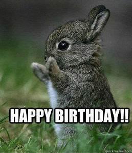 50 Best Happy Birthday Memes 10 | Birthday Memes ...