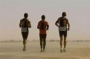 Running the Sahara (2007) - James Moll   Synopsis ...
