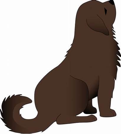 Dog Sitting Clipart Brown Down Puppy Clip