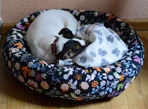 hundebett selber nähen 101 besten n 228 hen f 252 r hunde und katzen bilder auf