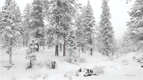 winter wonderland   resolution youtube
