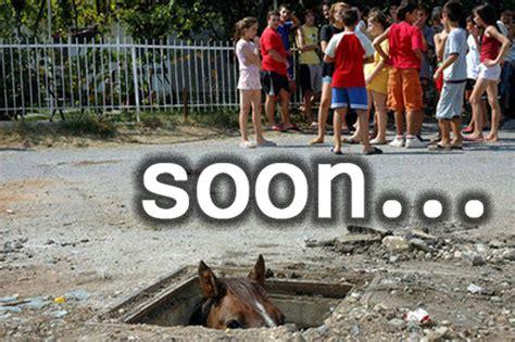 Soon Horse Meme - soon know your meme