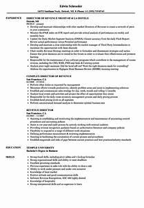 Coordinator Resume Examples Revenue Director Resume Samples Velvet Jobs