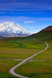 Alaskan Photo Tours  Activities And Attractions In Denali