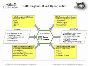 Instructions For Creating A Turtle Diagram  U2014 Concentric Global