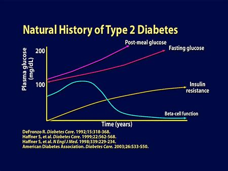 insulin treated type  diabetes balancing physiologic