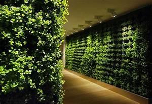 Green, Wall, Corridor, Decoration