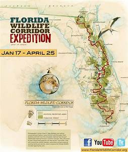 Florida Wildlife Corridor Map