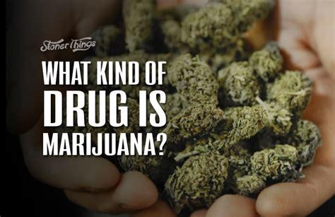 What Kind Of Drug Is Marijuana?  Stoner Things