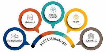 Professionalism Seo Services Essay Why Belajar Pekerjaan