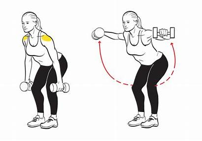Reverse Fly Shoulders Shoulder Sculpt Exercises Ways